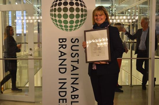 NCC sustainable brand index Christina